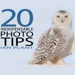 20 photo tips 14 Ebooks Gratis de Fotografia II