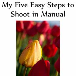 five easy steps shoot manual 14 Ebooks Gratis de Fotografia II