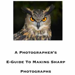 photographers eguide sharp photographs 14 Ebooks Gratis de Fotografia I