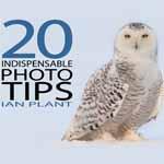 20_photo_tips
